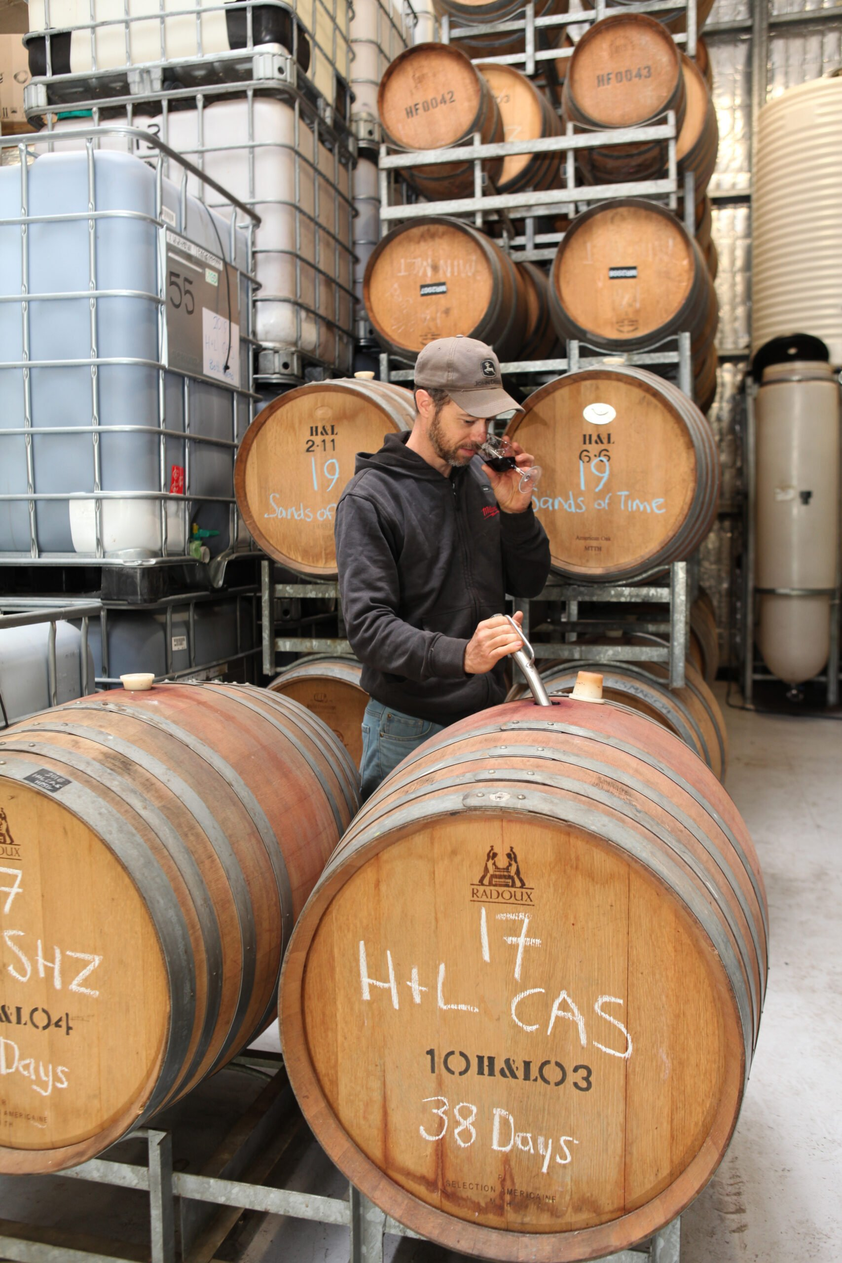 Winemaker Wine tasting from American and French Oak Barrels